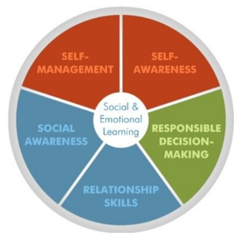 CASEL framework
